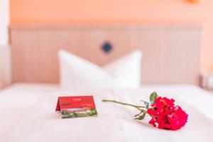 Hotel_am_Schloß038_06222019